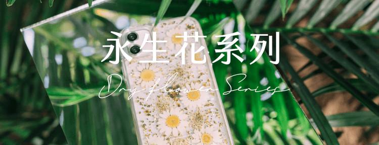 LANIS永生花系列-夏日雛菊